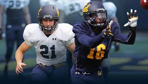 Flower Of Images - calbears com university of california official athletic site