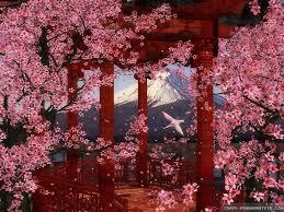 japan flowers wallpapers crazy frankenstein