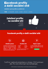 work of webdesign and webdeveloping in czech this