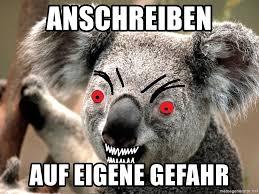 Koala Meme Generator - anschreiben auf eigene gefahr abortion koala meme generator