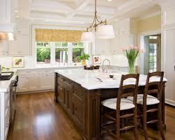 Kitchen Design Pictures White Cabinets Dark Island White Cabinets Houzz