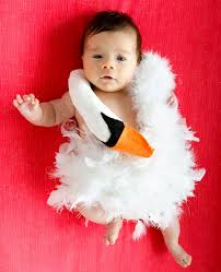 Baby Sushi Halloween Costume Check 50 Creative Baby Costumes Kinds Events