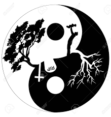 silhouette of and tree in yin yang symbol royalty free