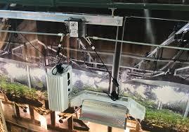 where to buy indoor grow lights gavita indoor grow lights on lightrail light movers