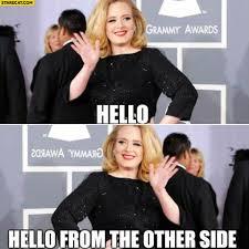 Adele Memes - adele memes starecat com
