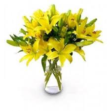 yellow lilies 8 yellow lilies in glass vase myflowergift