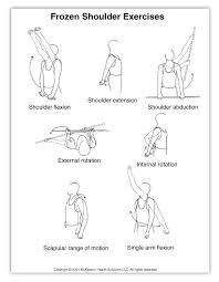 27 moving images fitness exercises