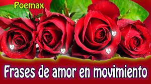 bonitas de rosas rojas con frases de amor imagenes de amor facebook frases de amor rosas rojas imagenes en movimiento youtube