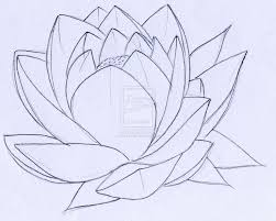 Simple Lotus Flower Drawing - 17 best lotus images on pinterest lotus flower lotus and how to