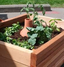 Urban Garden Supply - 17 best ollas images on pinterest clay pots garden ideas and