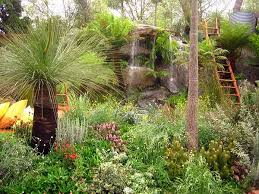142 best australian gardens images on pinterest landscaping