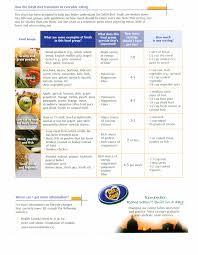 top diet foods diet programs