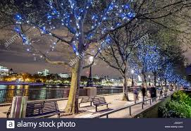 Fairy Lights In Trees by Trees With Fairy Lights At Night On The Southbank London Uk Stock