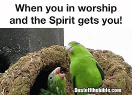 Fasting Meme - fasting memes dust off the bible