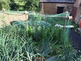 garden netting hoops garden