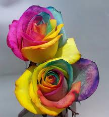 tie dye roses tie dye roses craft diy tie dye flowers