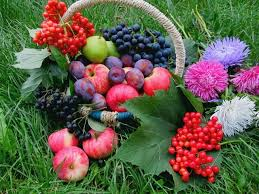 fruit and flowers fruits and flowers wallpaper puzzles eu puzzles