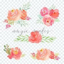 floral bouquets watercolor floral bouquets on transparent background watercolor