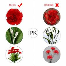 ourwarm 3pcs artificial carnations flowers for home decoration