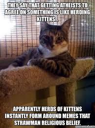 Kittens Memes - kittens