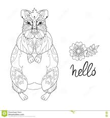 majestic design quokka animal coloring pages alaskan grizzly bear