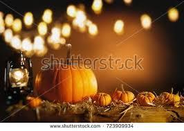 thanksgiving background fresh fall pumpkins stock photo