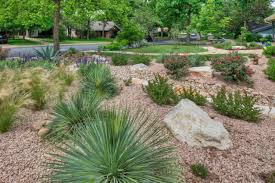 Backyard Xeriscape Ideas Arroyo Project Suitable For Framing Backyard Xeriscape