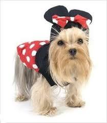 Disney Halloween Costumes Dogs 10 Disney Halloween Costumes Dogs Disney Merchandise
