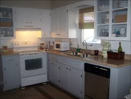 How To Paint My Kitchen Cabinets White Kitchen How To Redo Cabinets Diy Cabinet Refinishing What Color