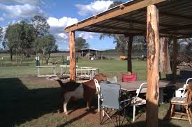 coonabarabran australia outbackpackers and the art of farming