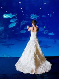 georgia aquarium wedding georgia weddings pinterest
