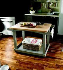 Kitchen Carts Home Depot by 14 Best Rolling Counter Images On Pinterest Kitchen Ideas Dream