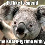 Koala Meme Generator - koala meme generator imgflip