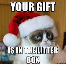Gift Meme - your gift is in the litter box memes com litter box meme on me me