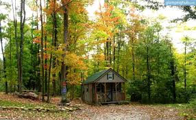 West Virginia forest images Cabin camping in west virginia jpg