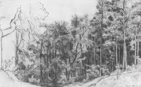 deciduous forest 1873 ivan shishkin wikiart org
