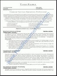 professional resume builder service tough love resume maker