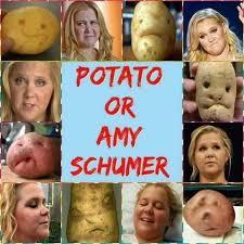 i saw an amy schumer meme on facebook milliondollarextreme
