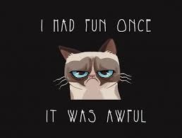 Grumpy Cat Meme I Had Fun Once - i had fun once it was awful grumpy cat meme wallpapers every day