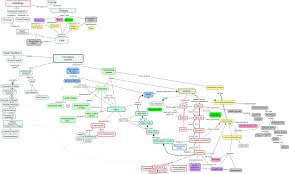Nervous System Concept Map Circulatory System How Are Tissues Arranged In The Circulatory