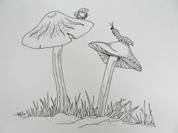 nature drawing pictures amazing pencil drawings of nature pencil