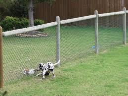 backyard fencing for dogs peiranos fences versatile electric