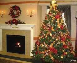 Pics Of Decorated Christmas Trees Best Christmas Tree Decoration Rainforest Islands Ferry