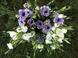 Wedding Flowers July 22 Best July Flowers Images On Pinterest July Flowers