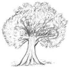 a sketch of a tree beatiful tree