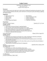 traditional resume examples professional gray resum example