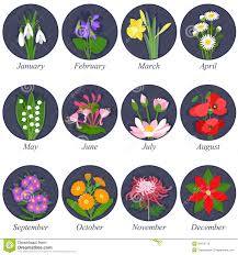 flower of the month flowers of the months royalty free stock photo image 32010715