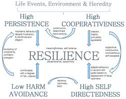Good Personality Traits For A Job The Relationship Between Resilience And Personality Traits In