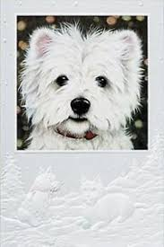 pumpernickel christmas cards christmas cards westie pumpernickel press made in the