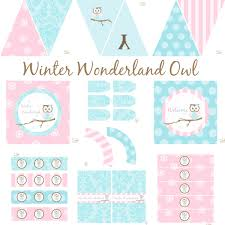 winter owl party decorations horse birthday decorations owl